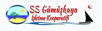 logo_Gumuskaya_Sitesi_200x62